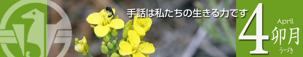荒川区聴覚障害者協会